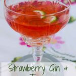 A glass of Strawberry Gin and Tonic